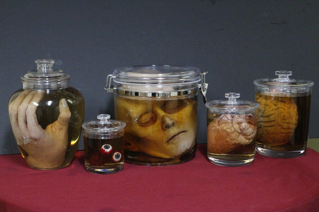 Body Parts Shatterproof Specimen Jar Combo