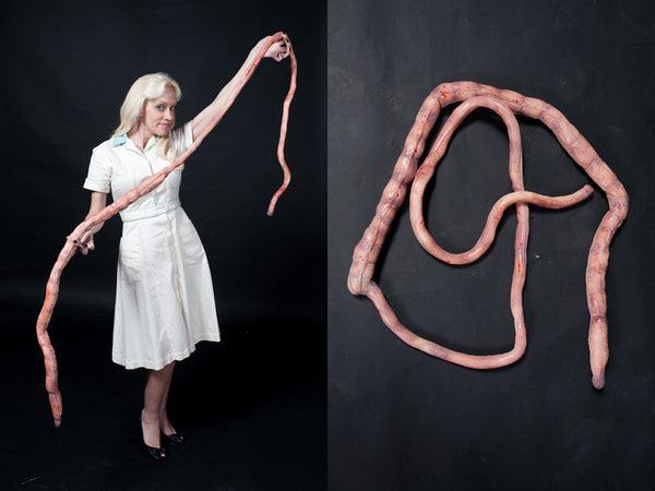 8ft Foam Rubber Intestines