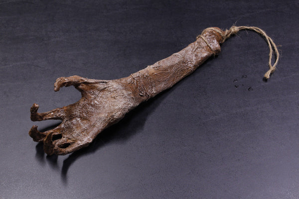 Mummified Hand Of Glory