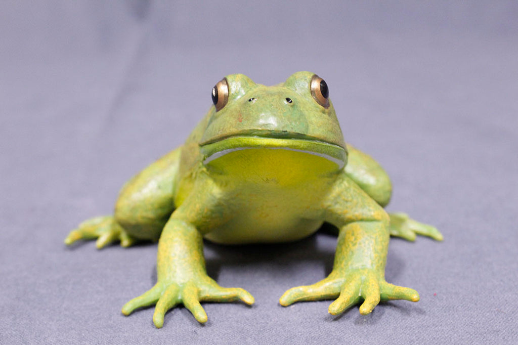 Realistic Rubber Frog