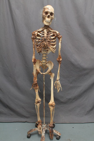 Skin and Bones Harvey Skeleton