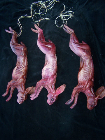 Set of 3 Skinned Rabbits