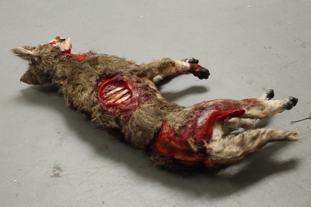 Wounded Coyote Prop