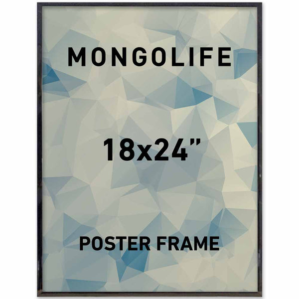 The Big Frame Guide — Mongolife