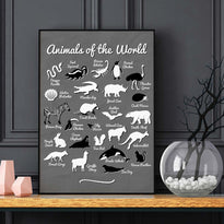 Animals of the World - Poster - Posters at Mongolife