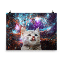 Space Kitten - Poster - Posters at Mongolife