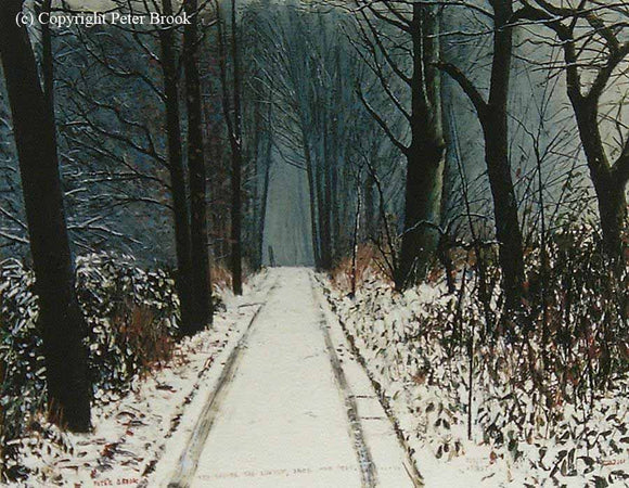 Peter Brook - The Woods Are Lovely, Dark And Deep