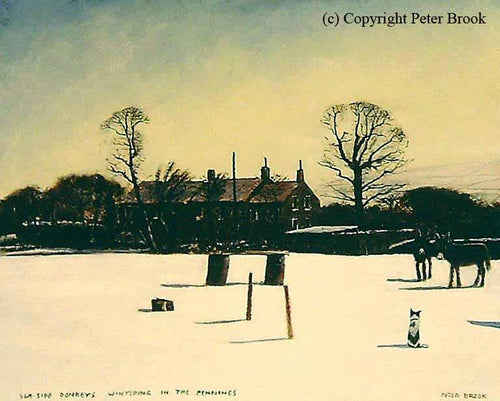 Peter Brook - Seaside Donkeys Wintering In The Pennines