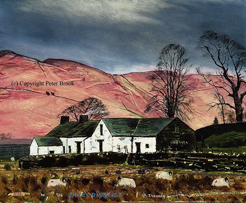 Peter Brook - The Lake District In January