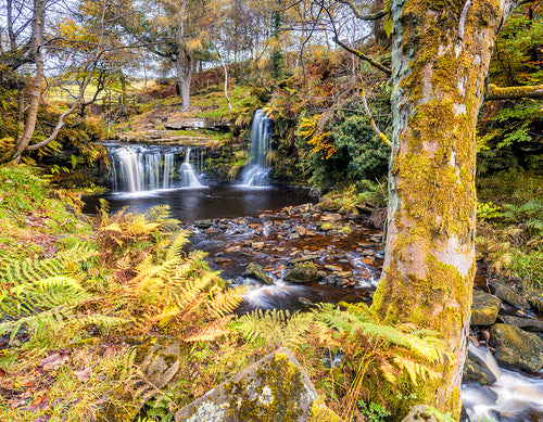 Autumn at Lumb Falls