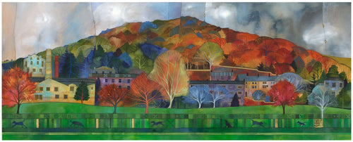Kate Lycett - The Big Park