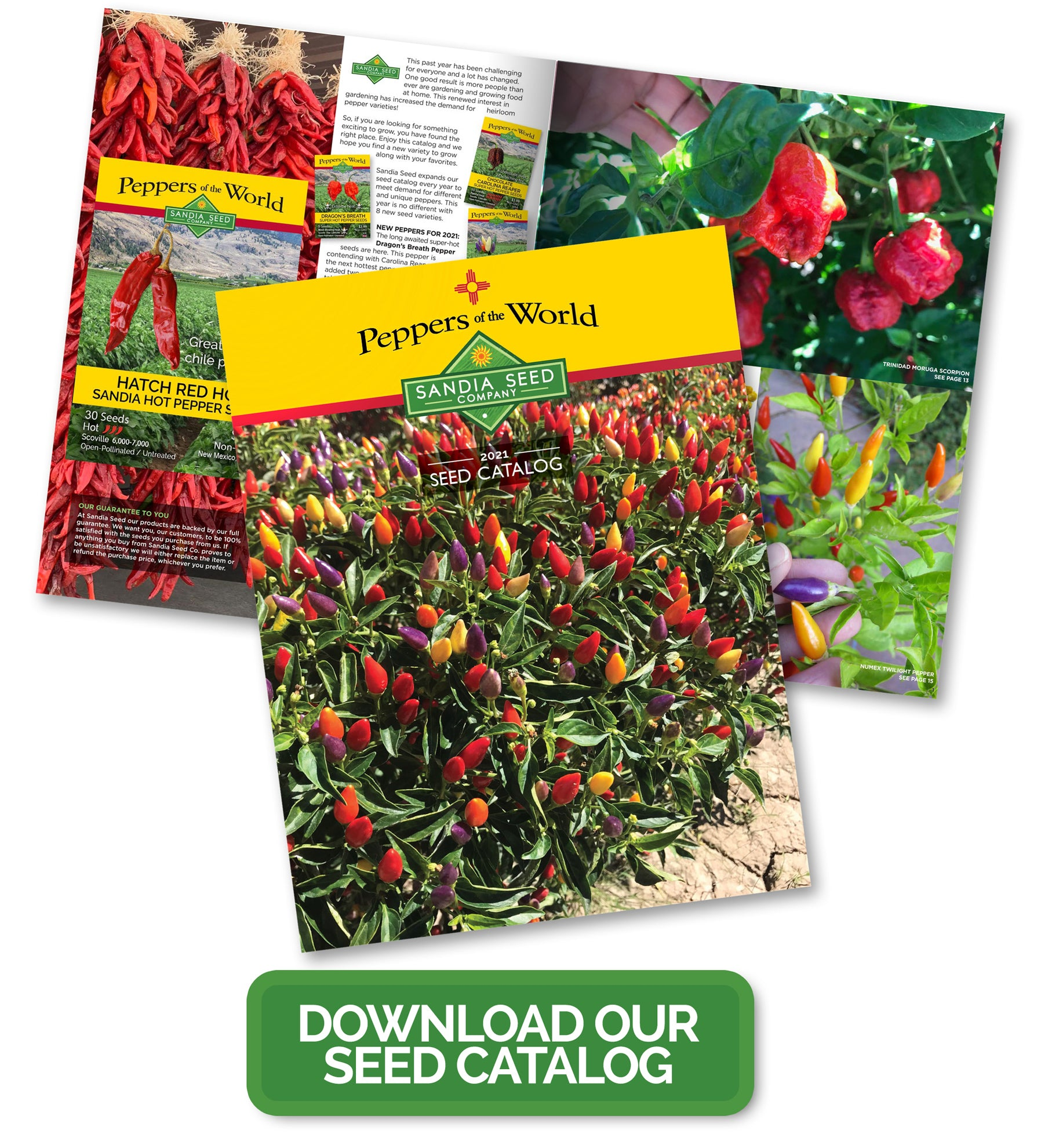 2021 Seed Catalog from Sandia Seed - Download PDF