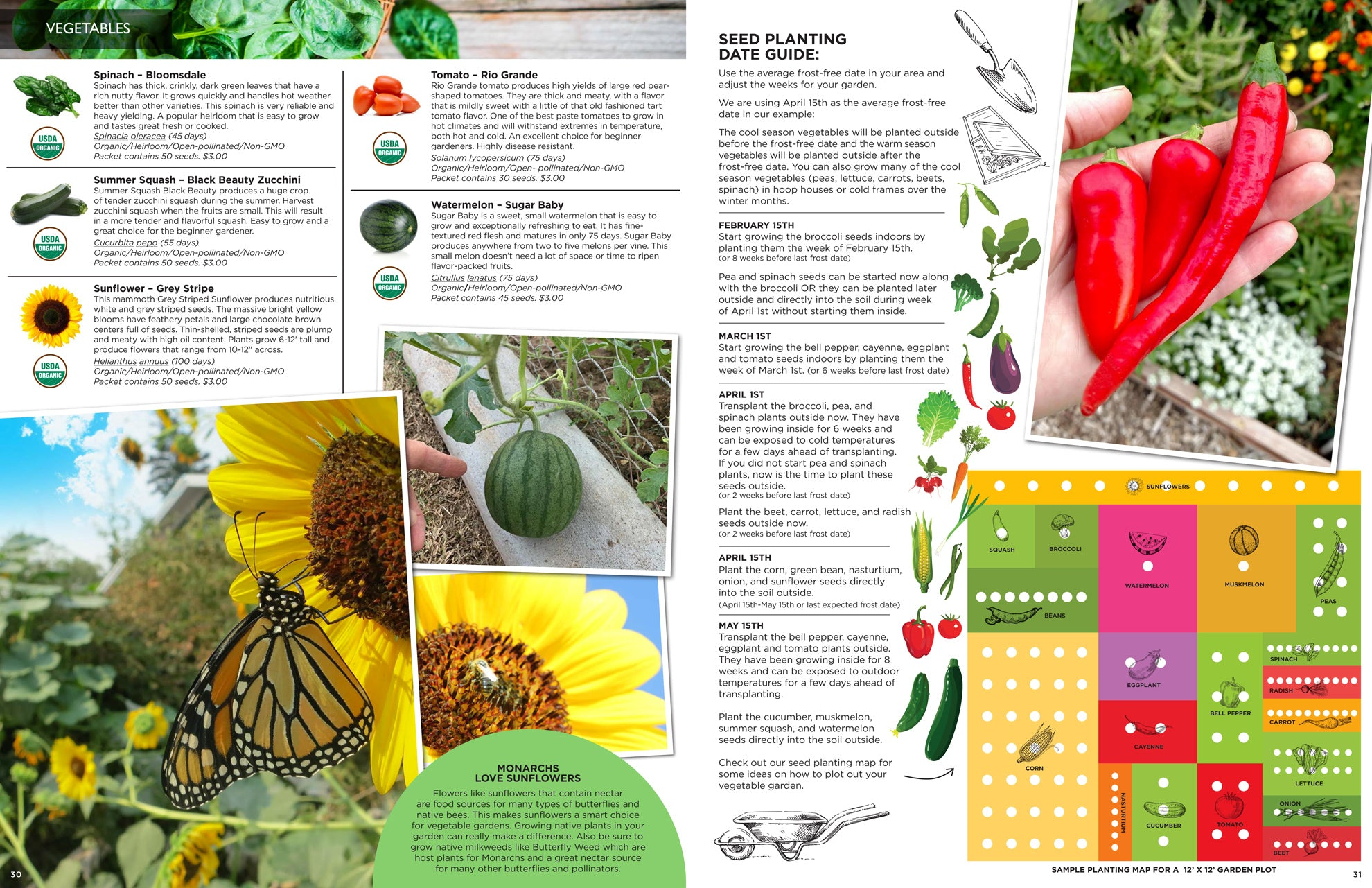 2021 Seed Catalog from Sandia Seed - Organic Vegetable Seeds & Growing Guide