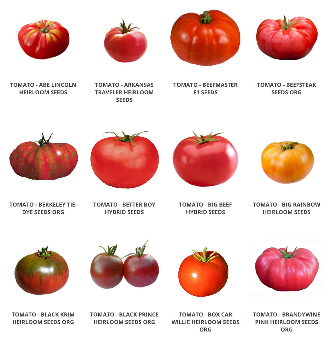 Best Tomato Cages: Grow Tomato Seeds!