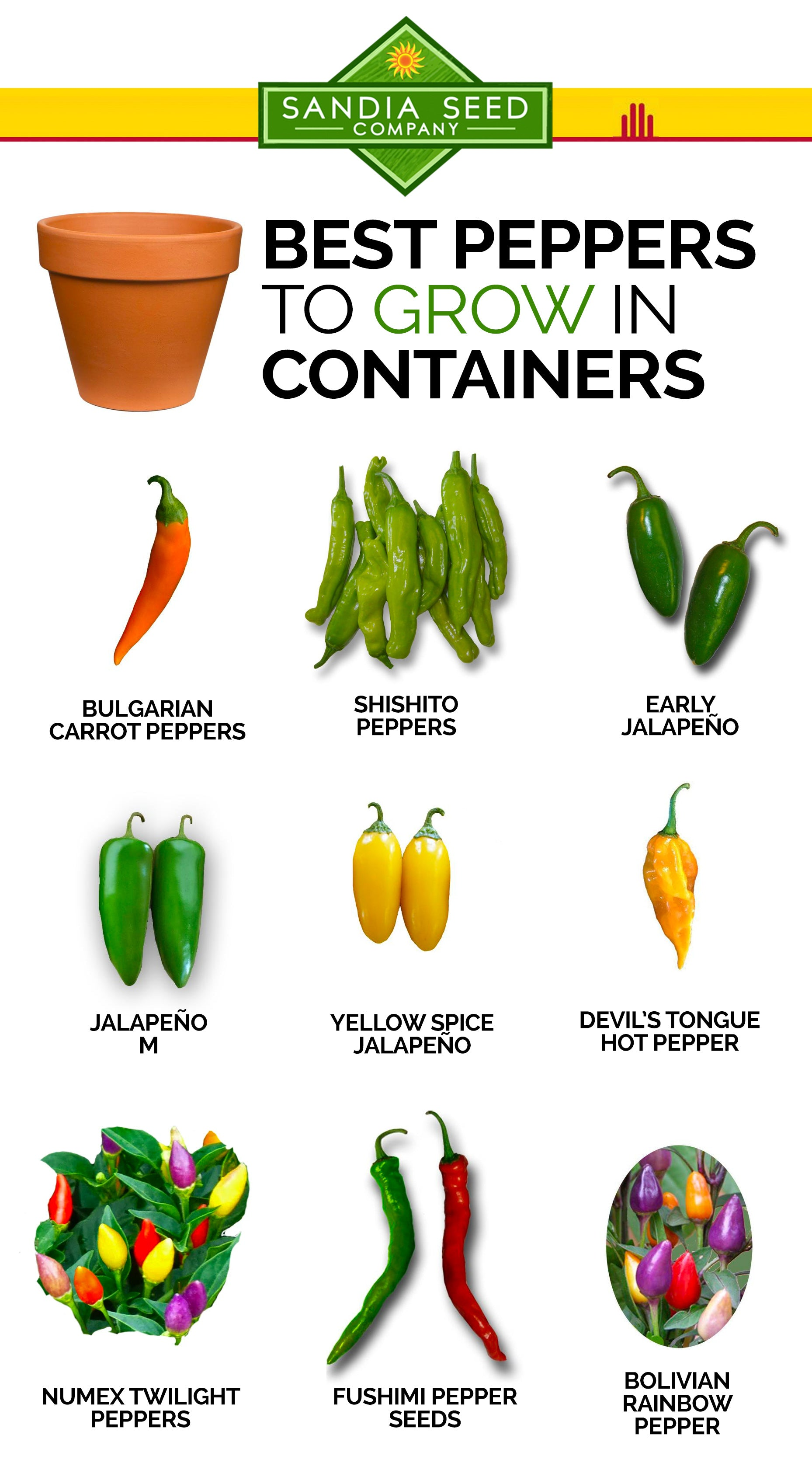 Fast Growing Vegetables - Best Peppers to grow in Containers