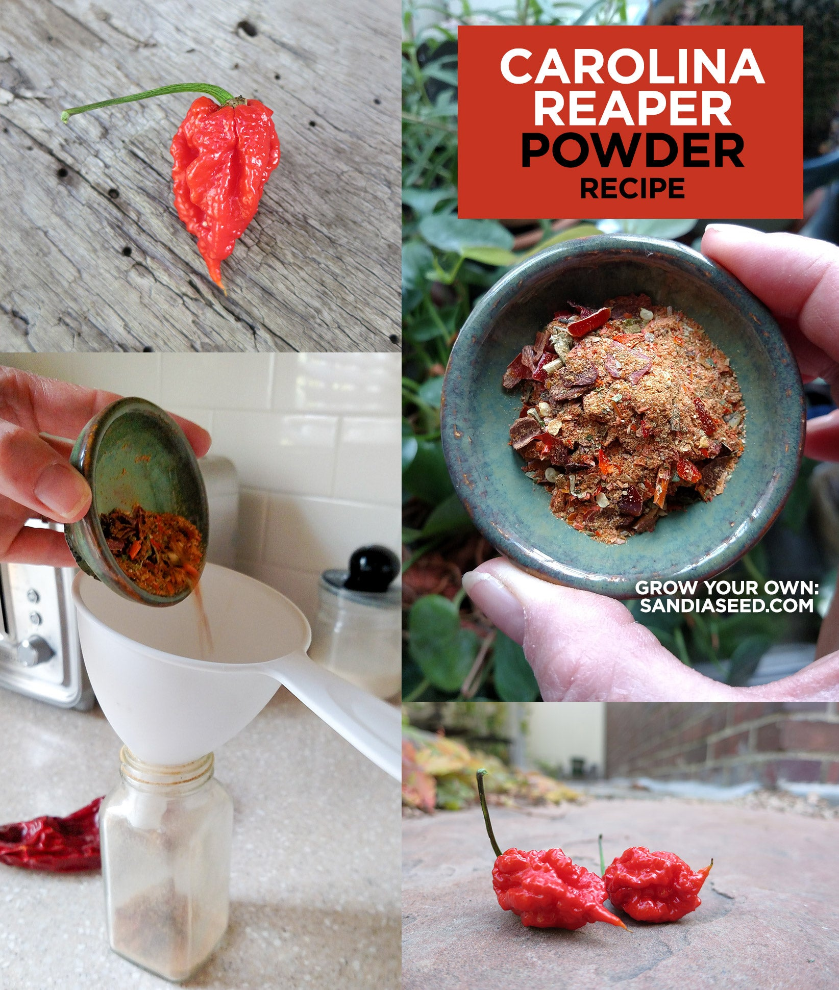 Carolina Reaper Powder Recipe
