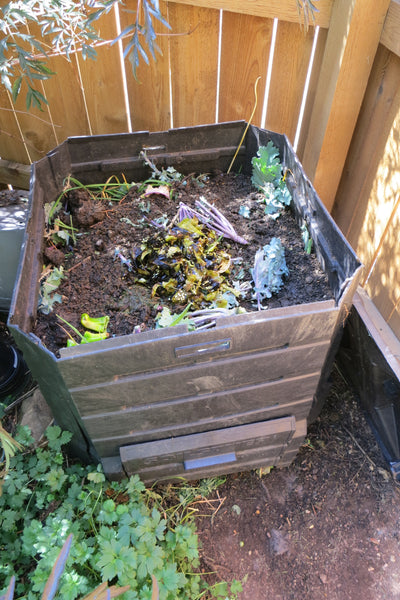 Fall Vegetable Garden Tips - Compost your food scraps and leaves!