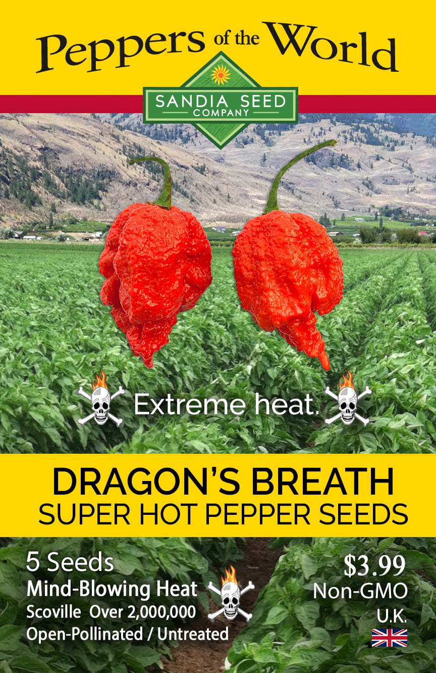 Dragon Peppers: Dragon's Breath Pepper Seeds