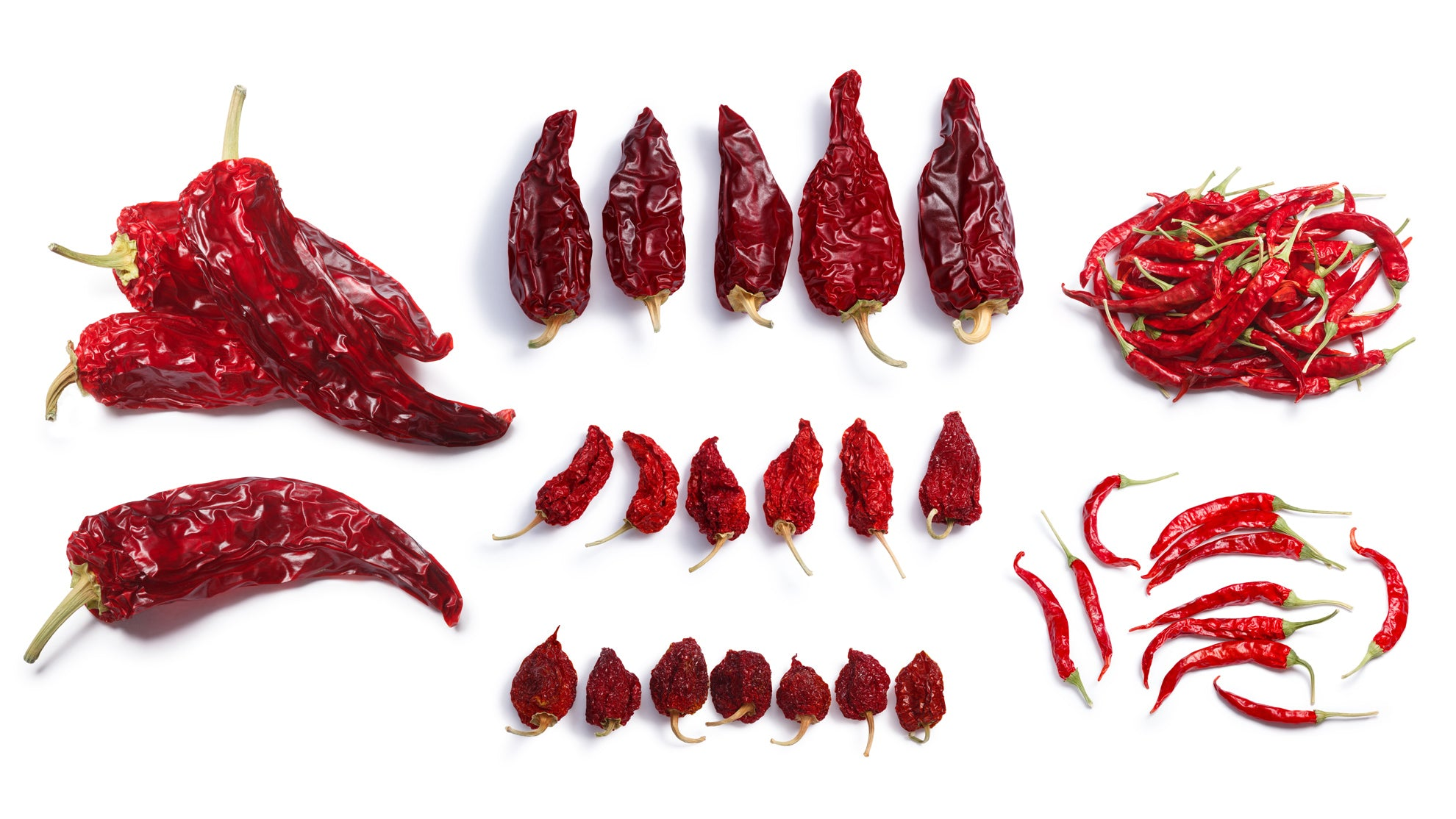 Dried Chile Names