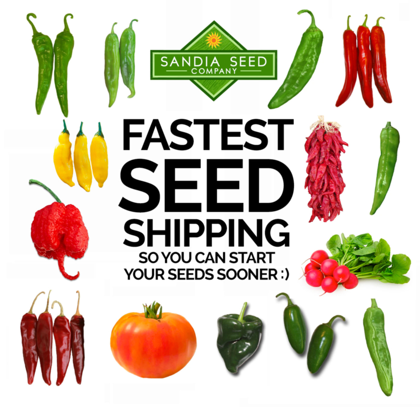 Fastest Seed Shipping