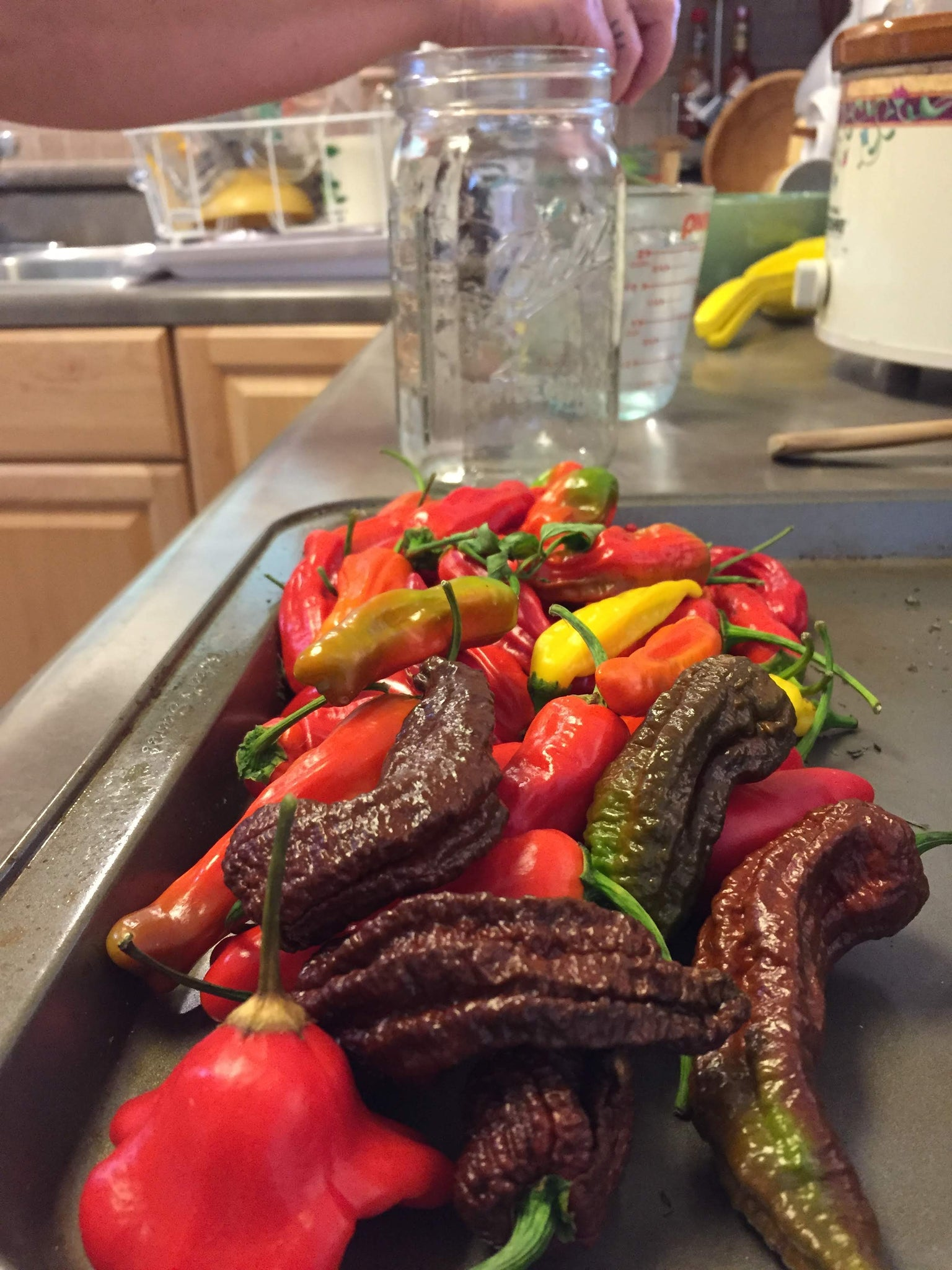 Will Ghost Peppers Ripen off the Plant?