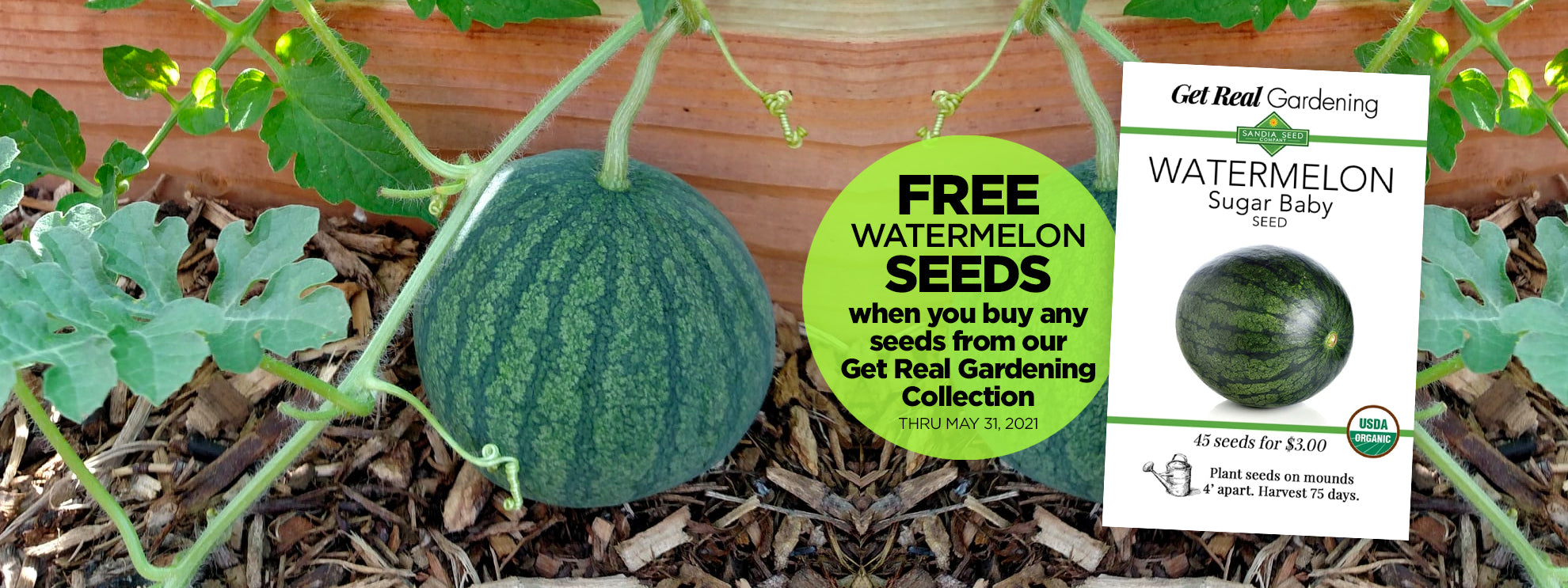 Free Seeds - Free Watermelon Seeds from Sandiaseed.com when you buy any of our Real Good Gardening Collection seeds!