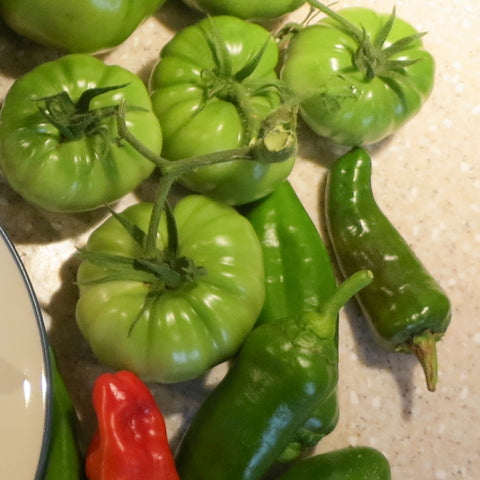 Spicy Fried Green Tomatoes Recipe