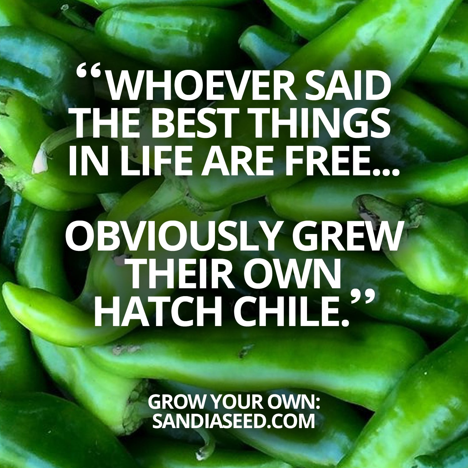Chili Meme: Whoever Said the Best Things in Life are Free... Obviously grew their own Hatch Chile""