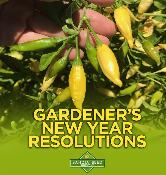 Gardener's New Year's Resolutions