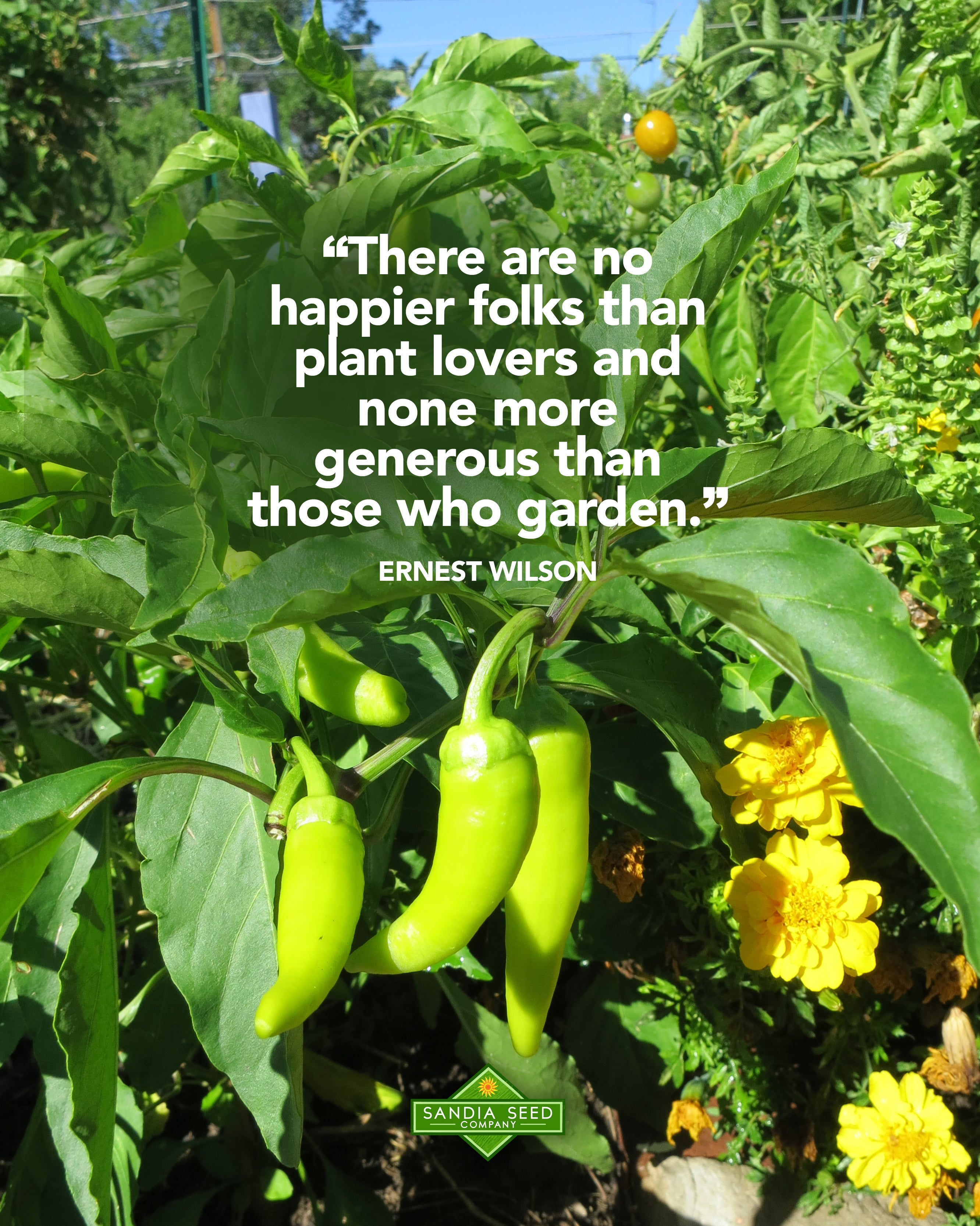 "Garden Memes - ""There are no happier folks than plant lovers and none more generous than those who garden."" Ernest Wilson"