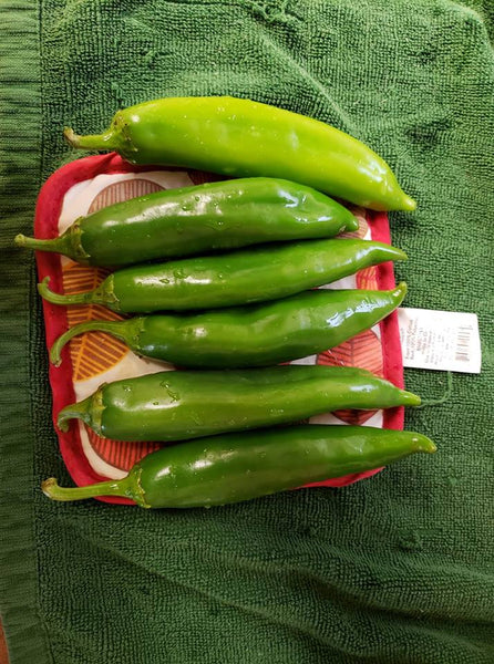 Hatch Chile Seed Review