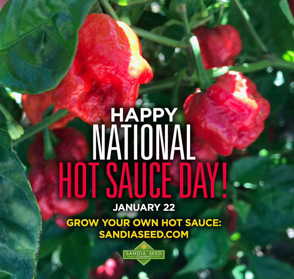 Happy National Hot Sauce Day!  January 22