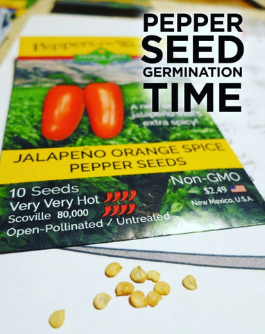 Grow Hot Peppers from Seed - best tips