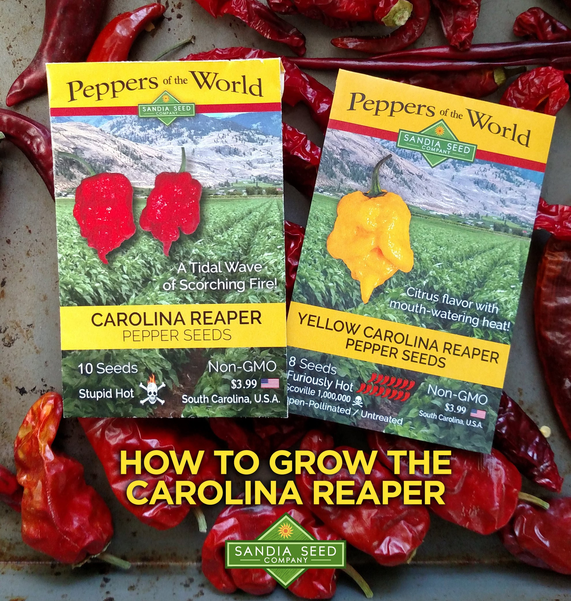 How to Grow Carolina Reaper