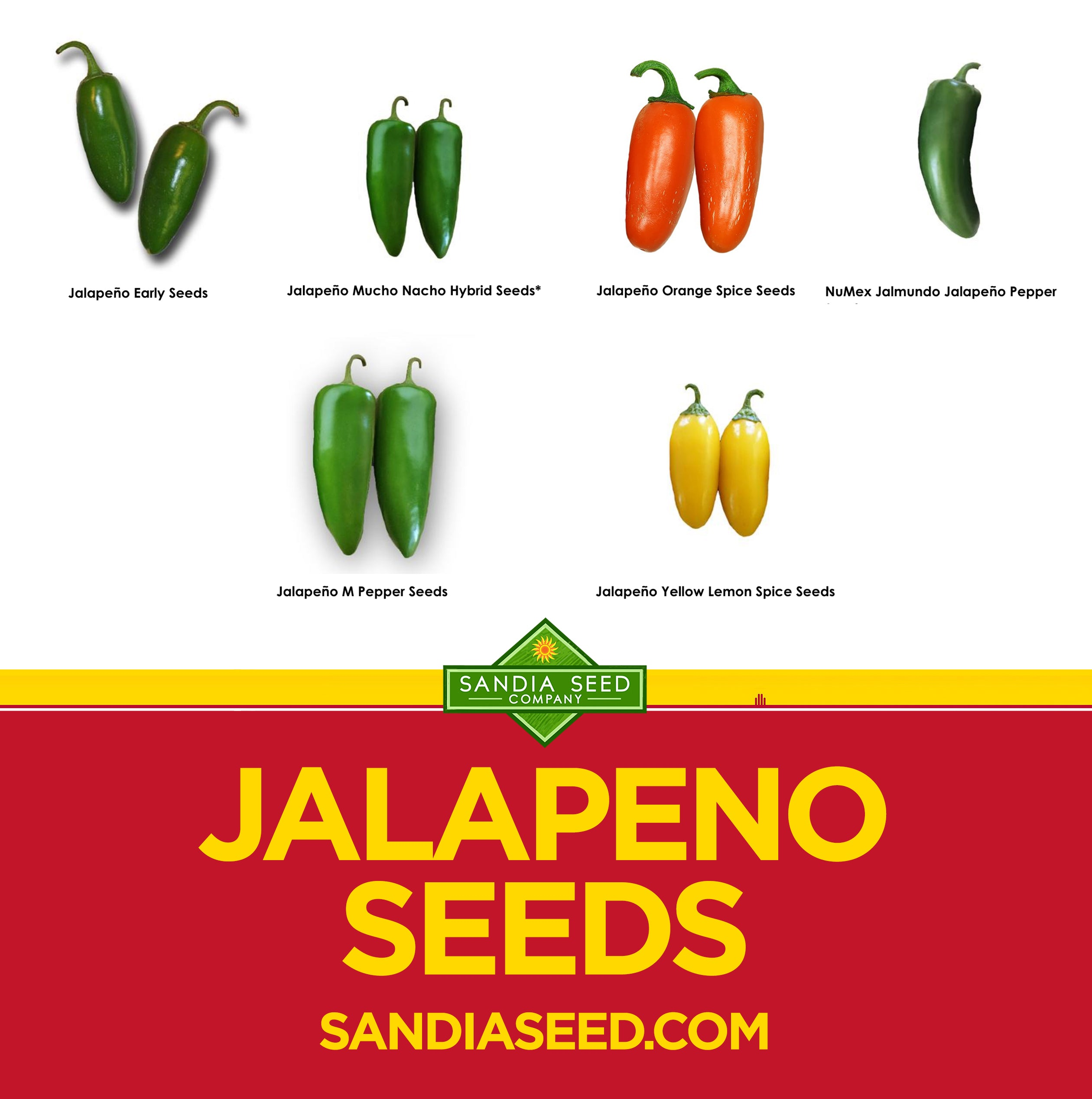 Types of Hot Peppers: Jalapeno Seeds