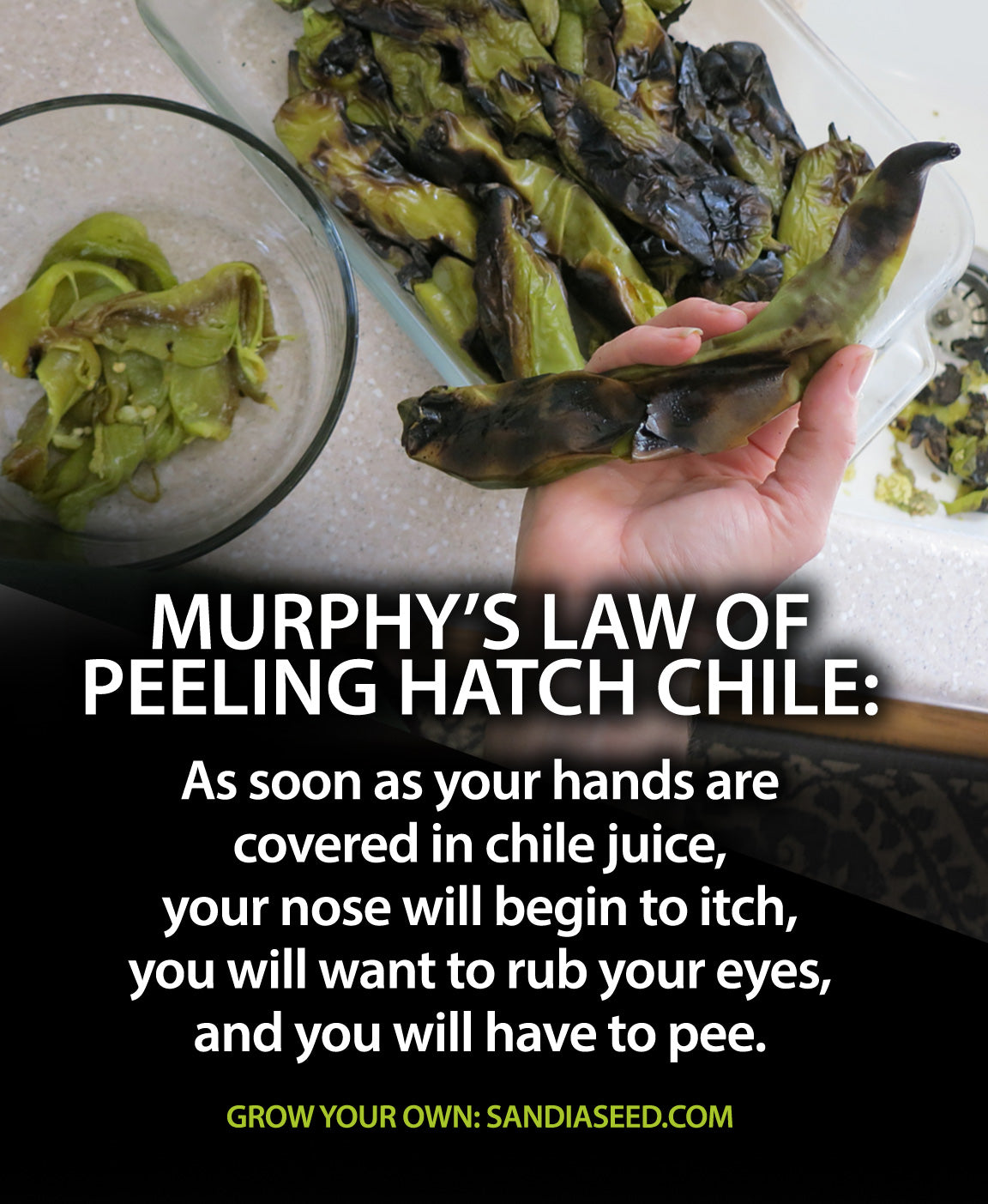 Murphys Law of Peeling Hatch Chile