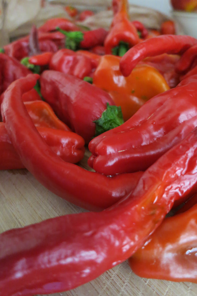 Best Vegetables to grow in Colorado: Red Hatch Chile