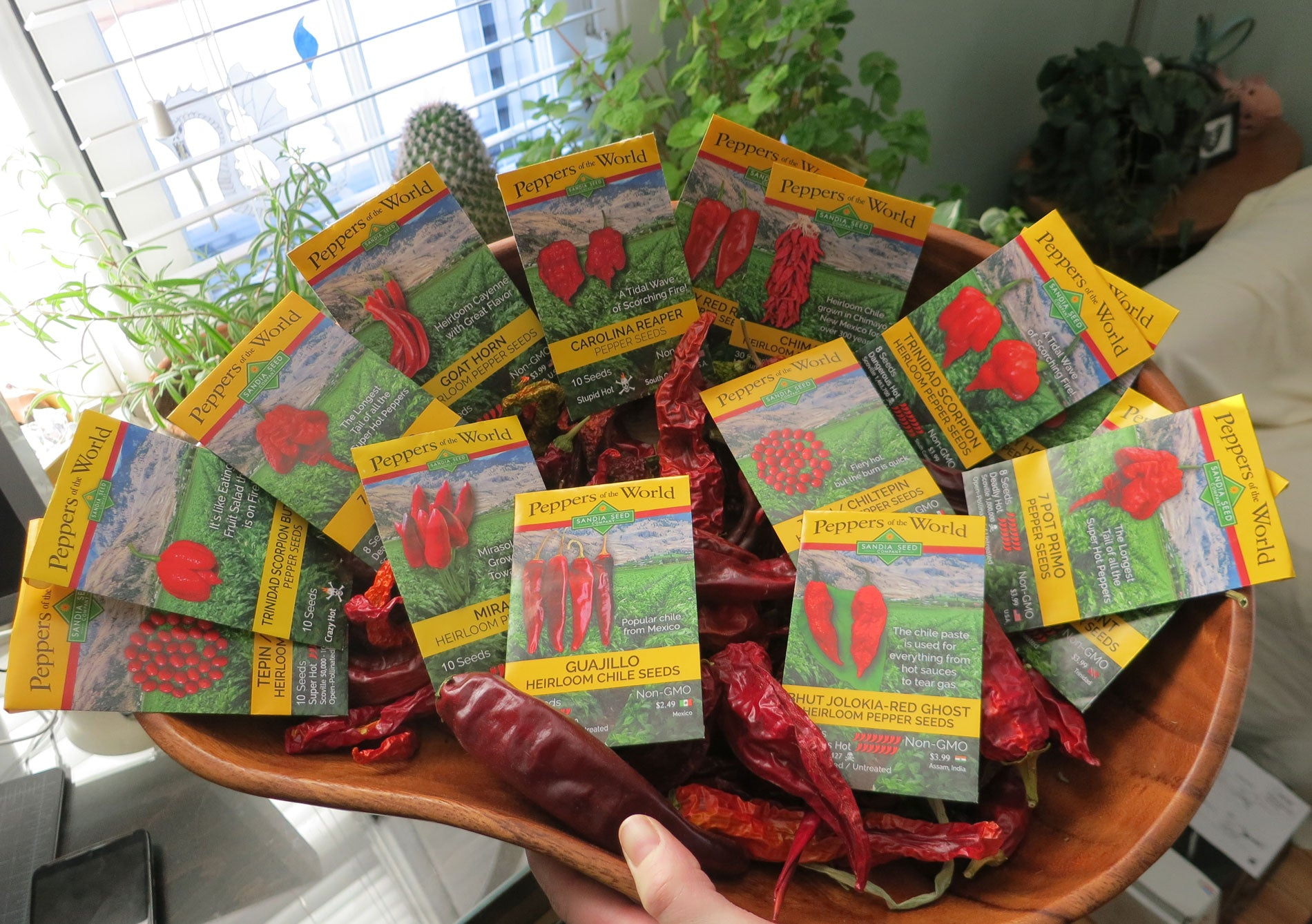 Red Pepper Seeds from Sandia Seed