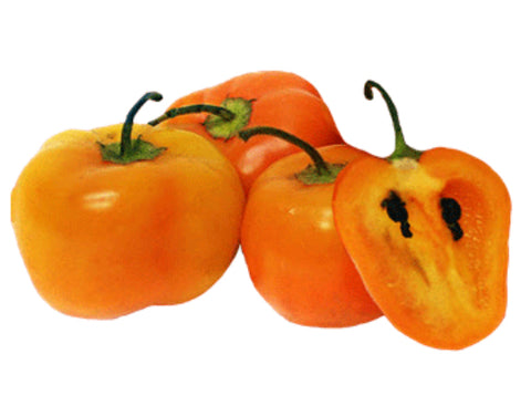 Rocoto Peppers - Seeds