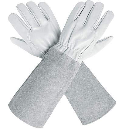 Best Gifts for Gardeners - Gloves