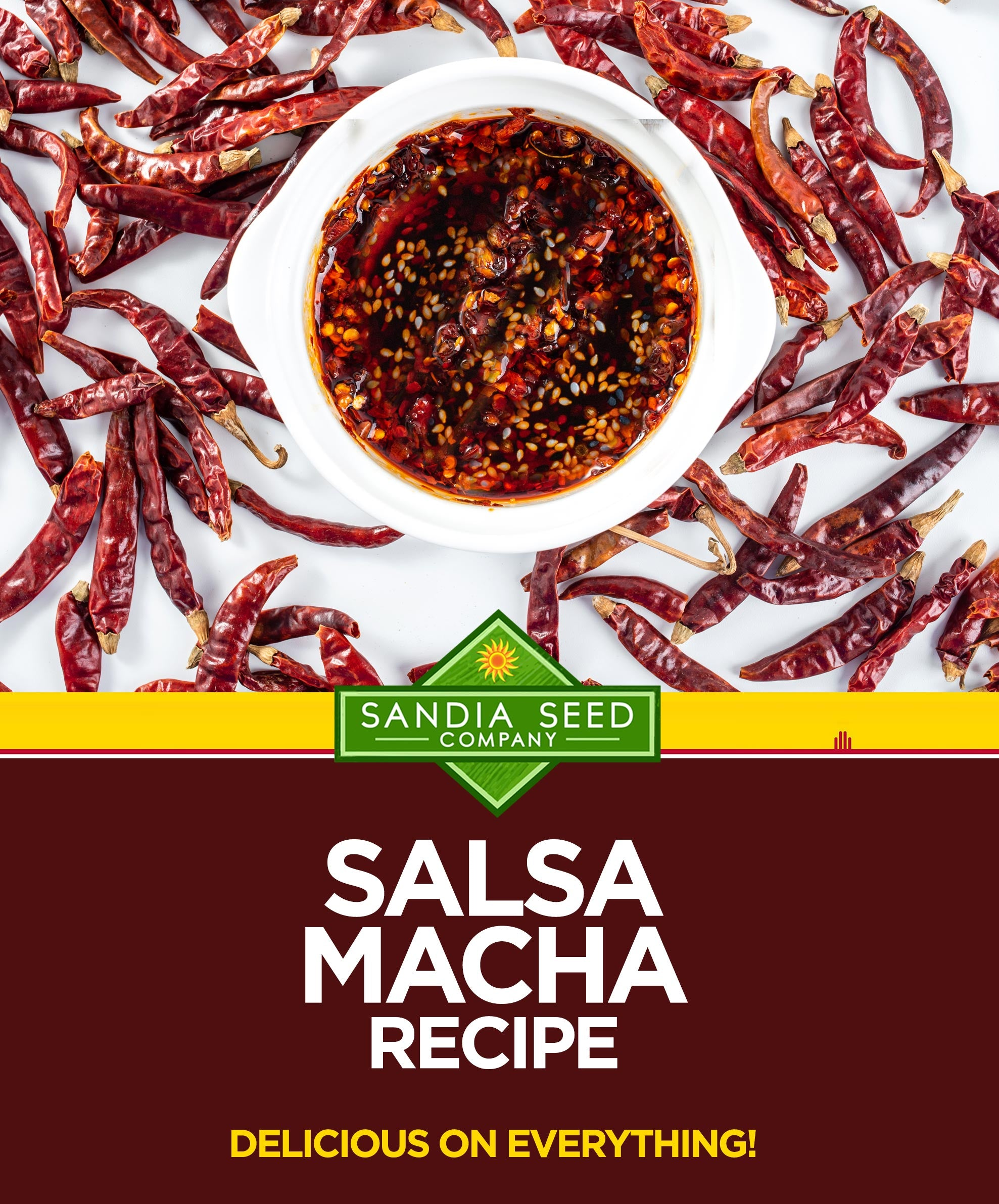 Best Salsa Macha Recipe
