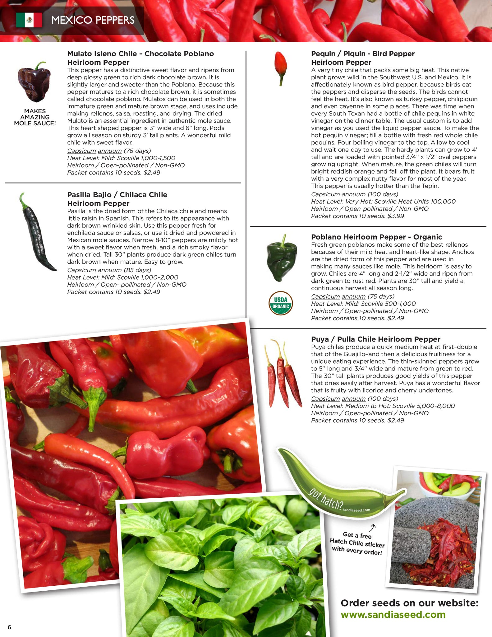 Best Seed Catalog - Pepper Seeds