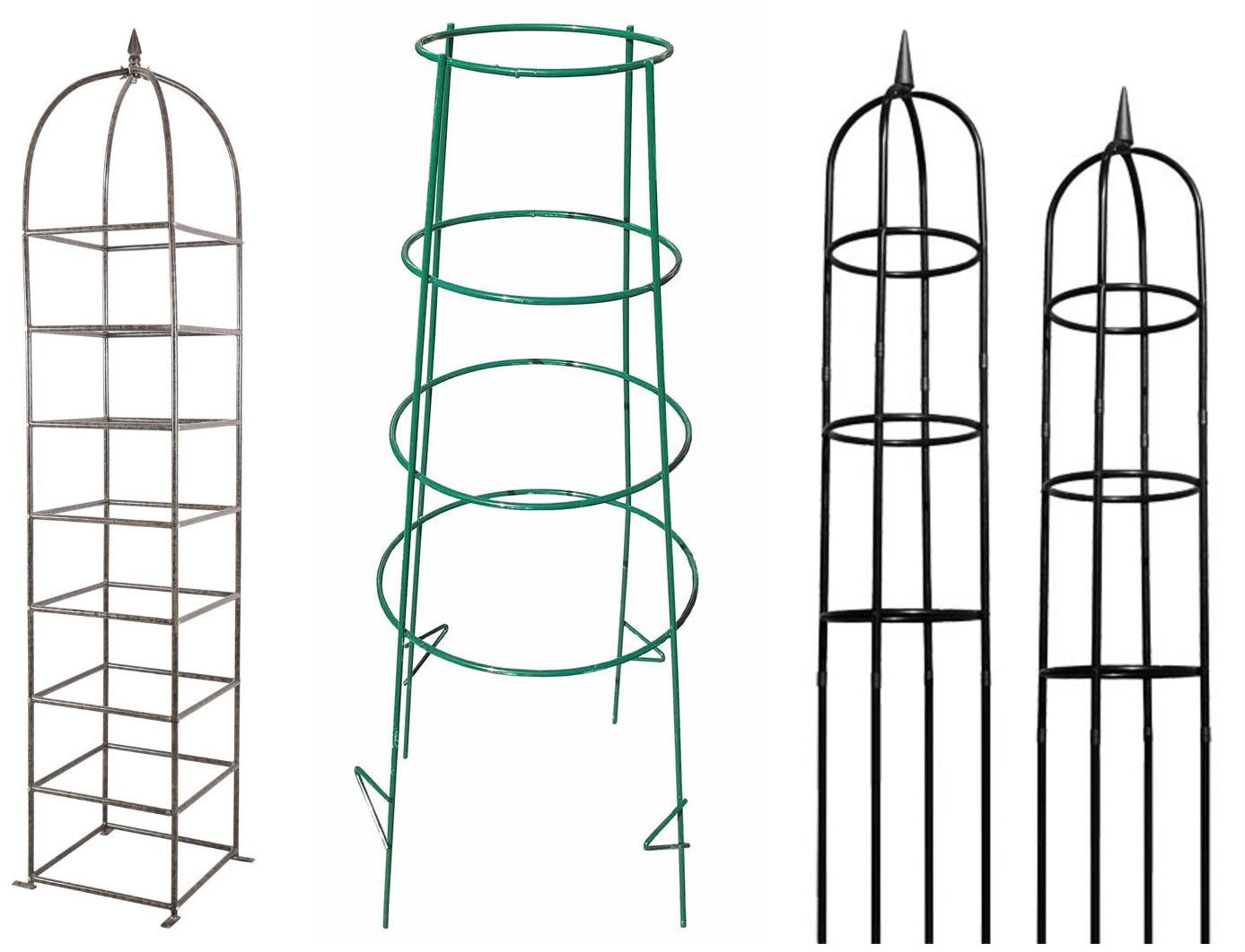 Best Presents for Gardeners - Tomato Cages such as Topiary Frames or Garden Obelisks