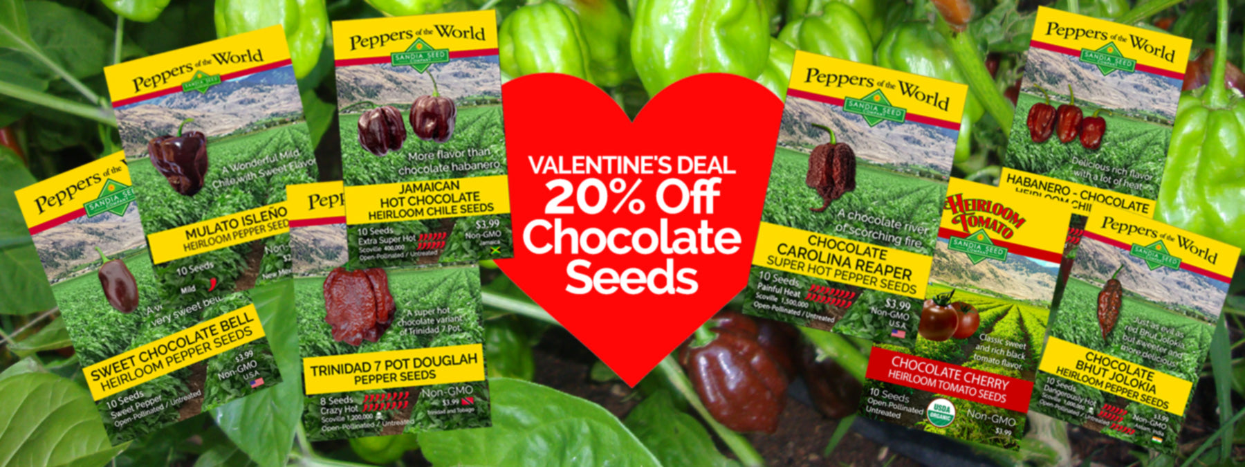20% off Seeds for Chocolate Varieties for Valentine's Day