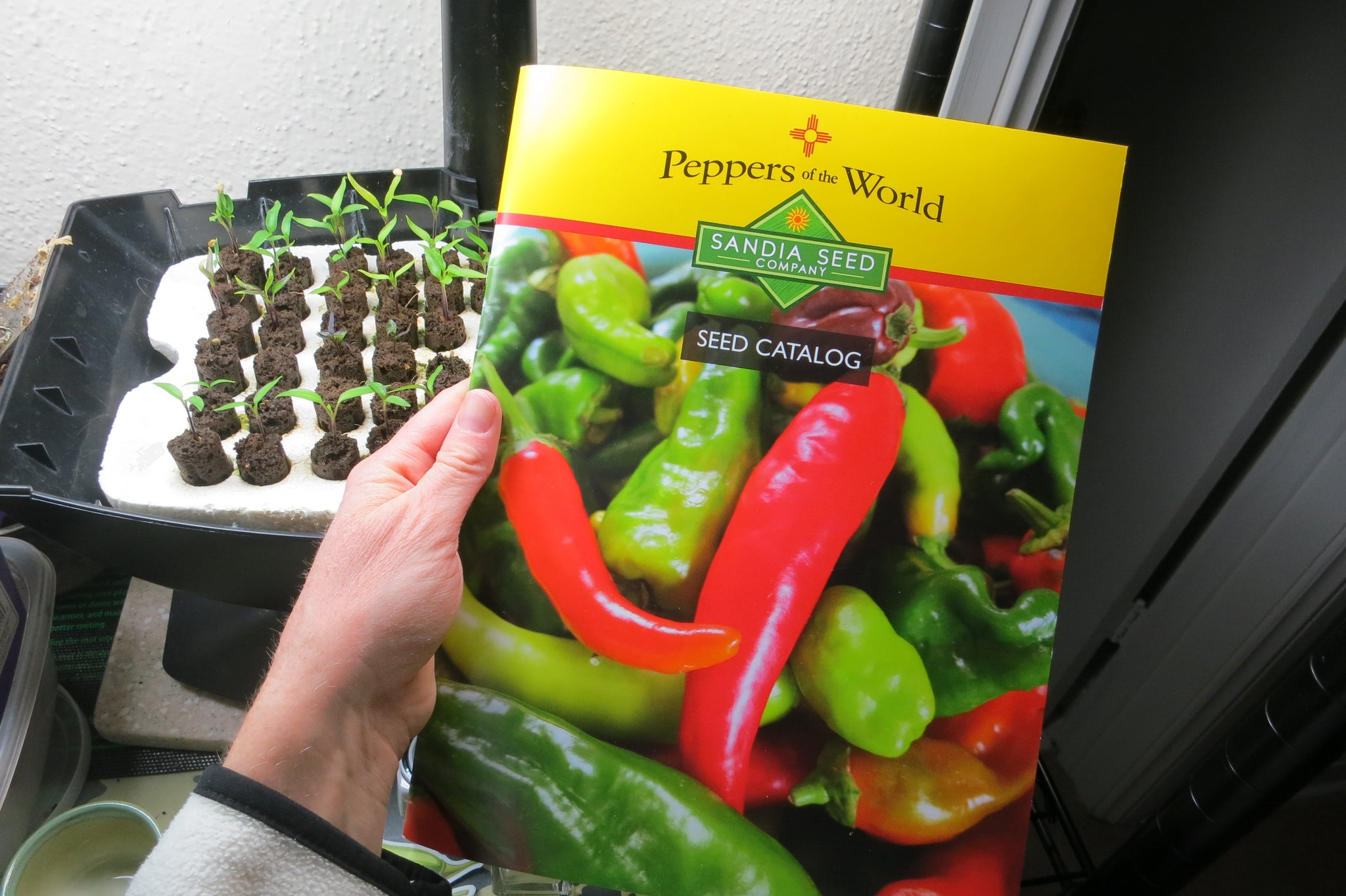 Vegetable Seed Catalog - Peppers and Tomato Seeds