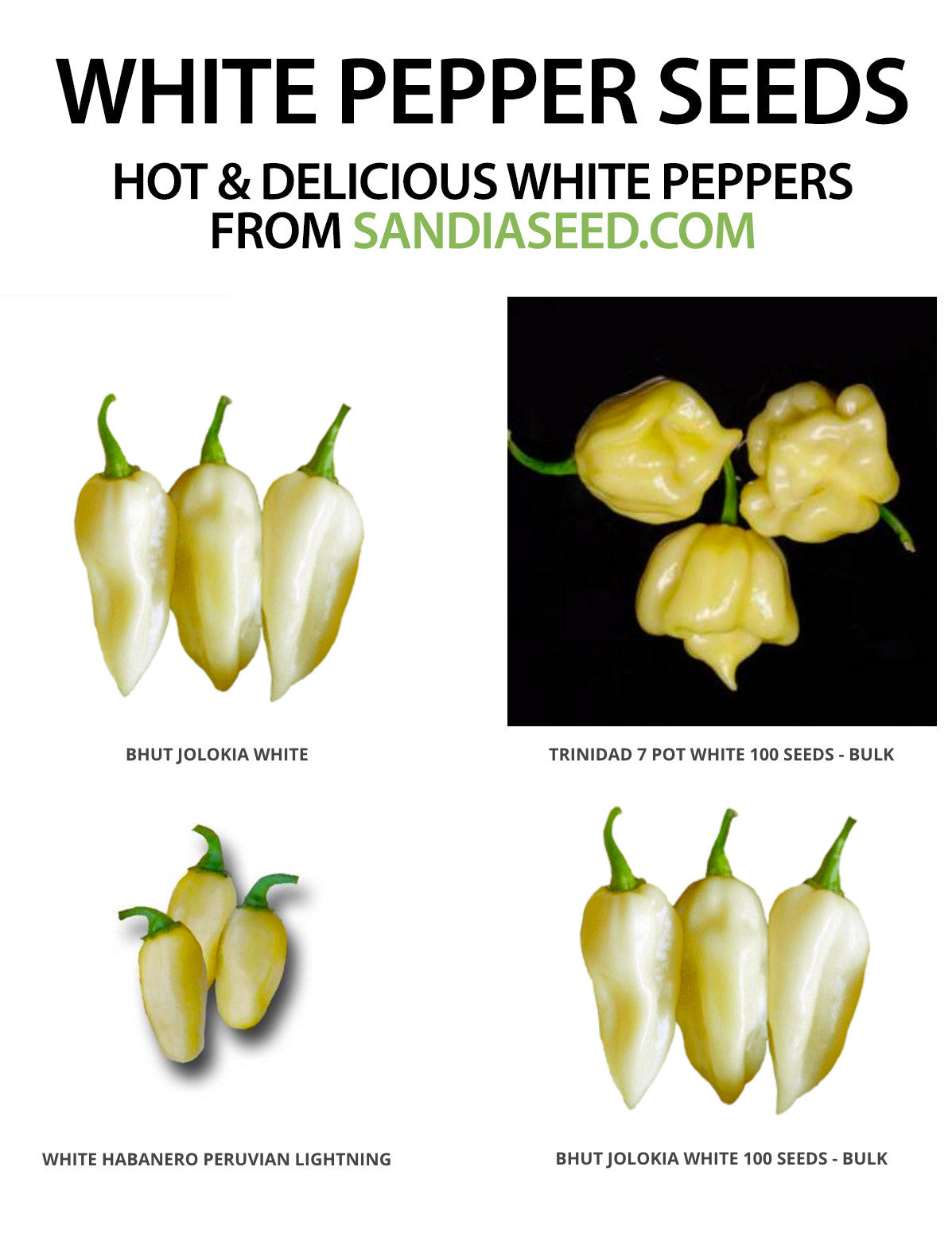 White Peppers Seeds Sandia Seed Company