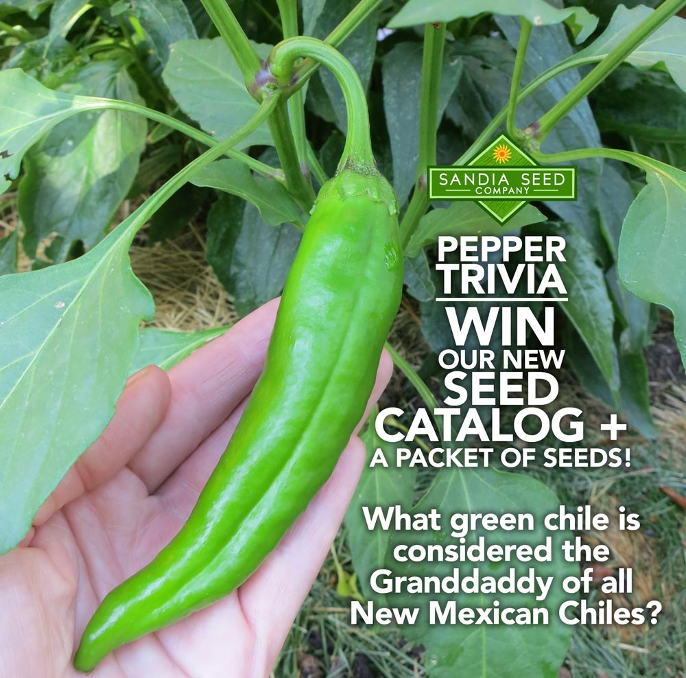 Win Seeds and a Seed Catalog!