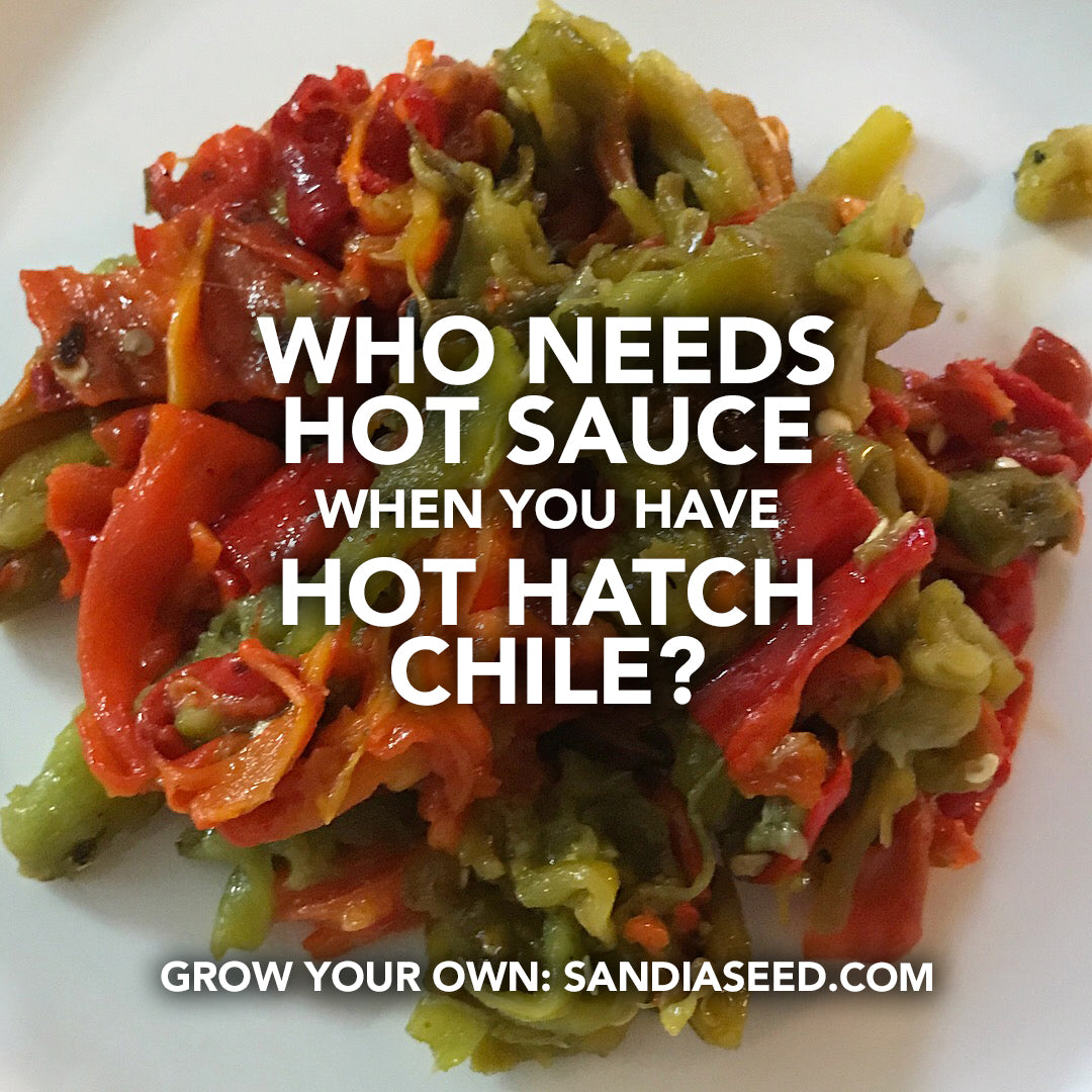 Chili Meme: Who Needs Hot Sauce when you have Hot Hatch Chile?