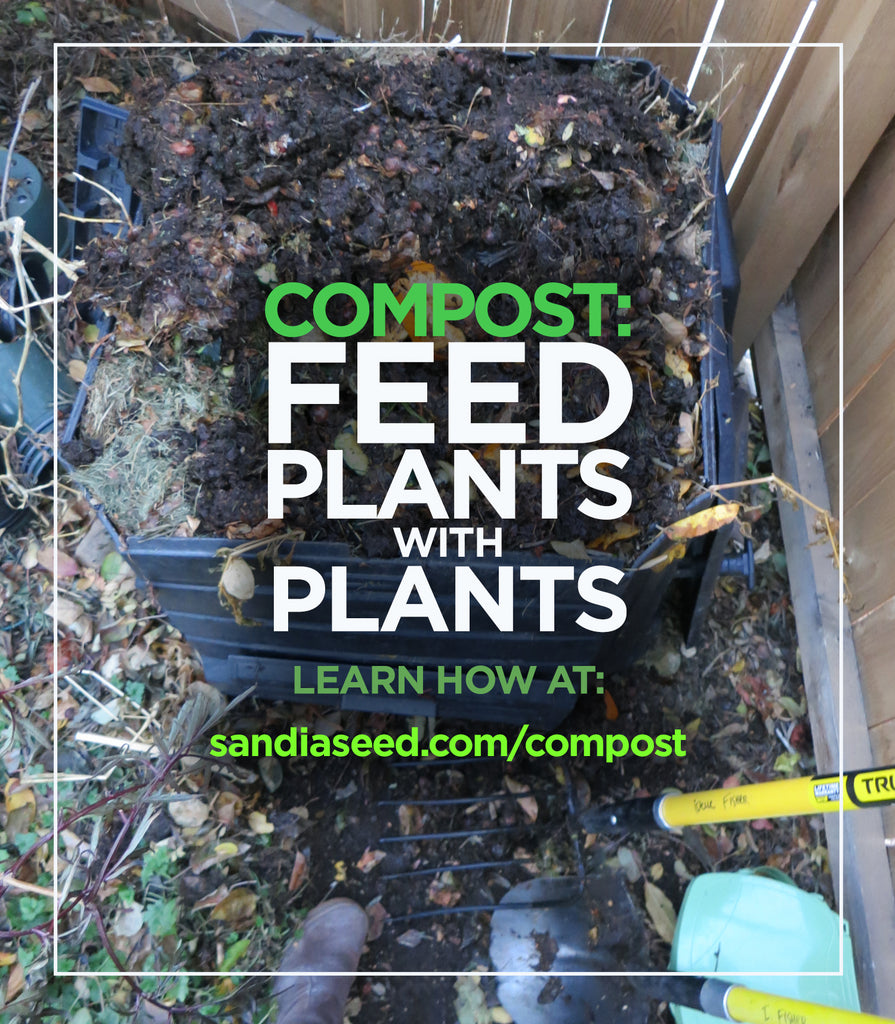 Compost: Feed Plants with Plants