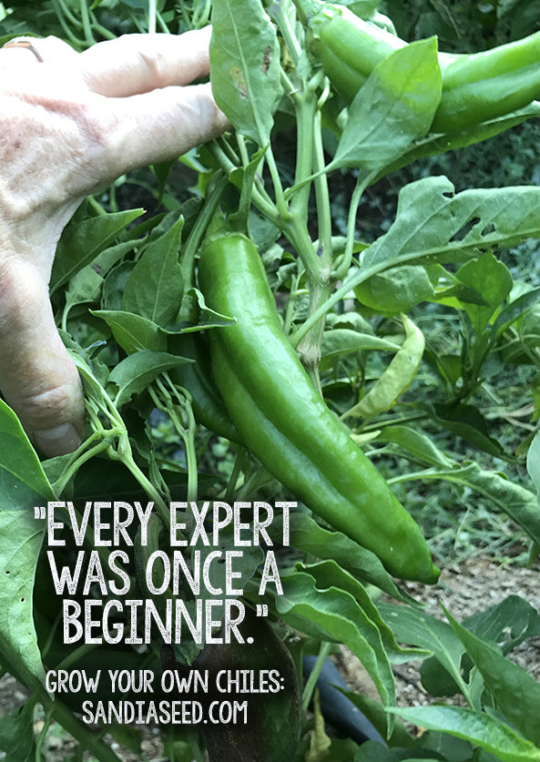 Every Expert Gardener was once a Beginner! - Growing Peppers